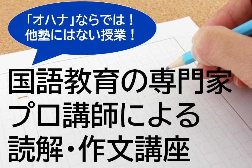国語教育の専門家(プロ講師)による読解・作文講座